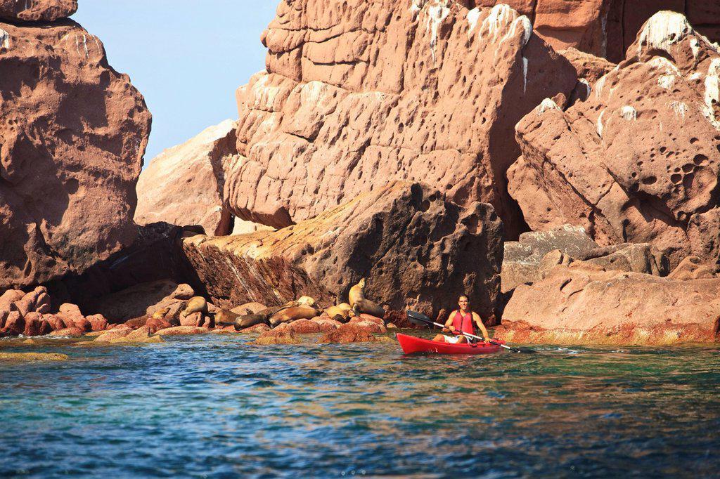 a tourist paddles in a red boat at los islotes national marine park espiritu santo island, la paz baja california mexico : Stock Photo