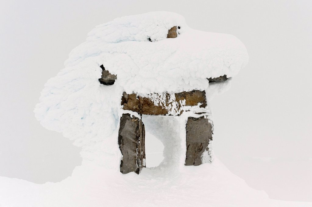 snow covering a tree stump, whistler, british columbia, canada : Stock Photo