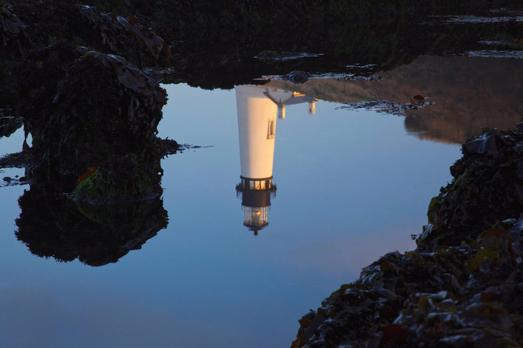 yaquina head lighthouse reflected in the water, newport oregon united states of america : Stock Photo