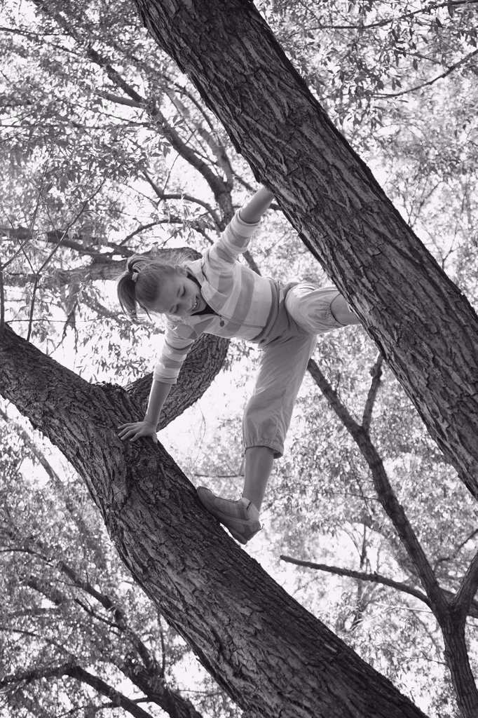 a girl climbs a tree, edmonton alberta canada : Stock Photo
