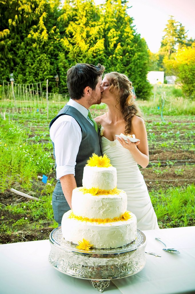 Stock Photo: 1889R-73505 Bride and groom kissing in front of their wedding cake, vancouver british columbia canada