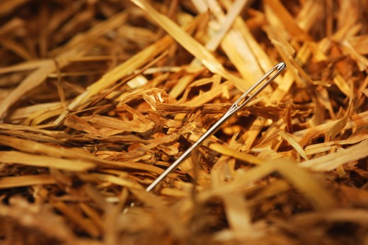 Stock Photo: 1889R-7519 Needle in a hay stack