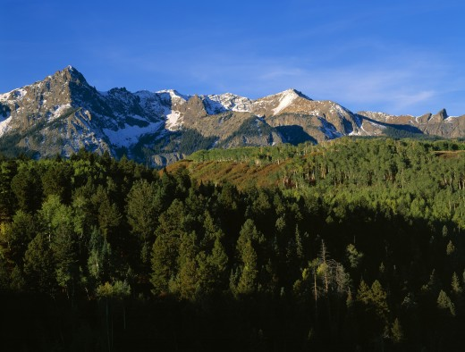 Stock Photo: 1889R-7554 Snow capped mountain range with aspen forest, Mount Sneffels Wilderness, Colorado, USA