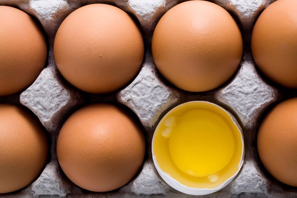 Stock Photo: 1889R-77077 Brown eggs in a a carton with one white shelled egg open showing the yoke, calgary alberta canada