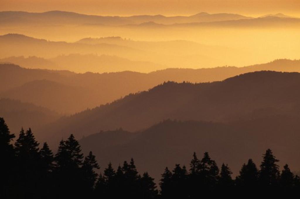Hazy ridges of Trinity Alps at sunset : Stock Photo