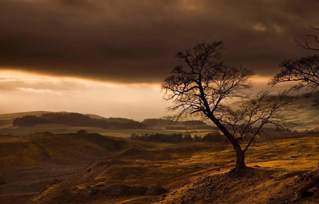 Stock Photo: 1889R-82428 Storm clouds over a hilly landscape, northumberland, england