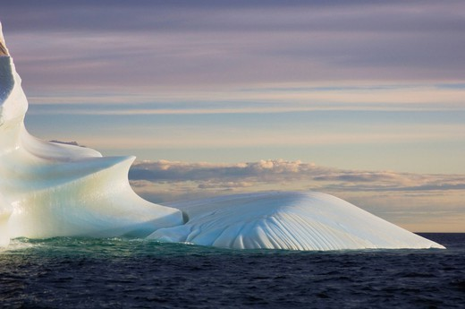 Icebergs, newfoundland, canada : Stock Photo