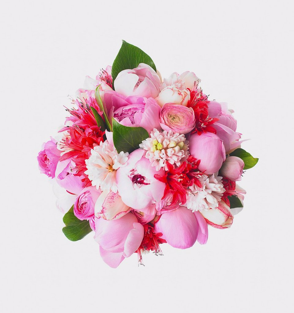 Stock Photo: 1889R-84692 Bouquet of flowers