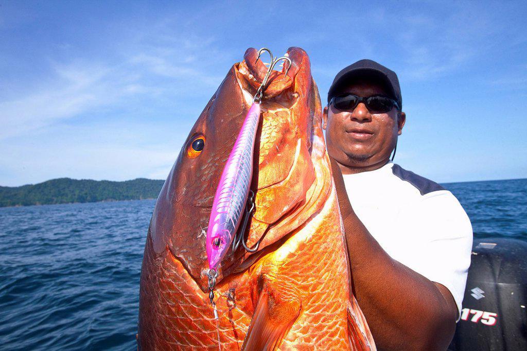 Stock Photo: 1889R-85047 Man holding fresh caught cubera snapper lutjanus cyanopterus, panama