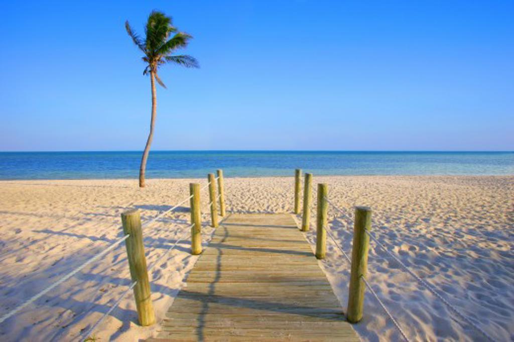 Walkway onto beach : Stock Photo
