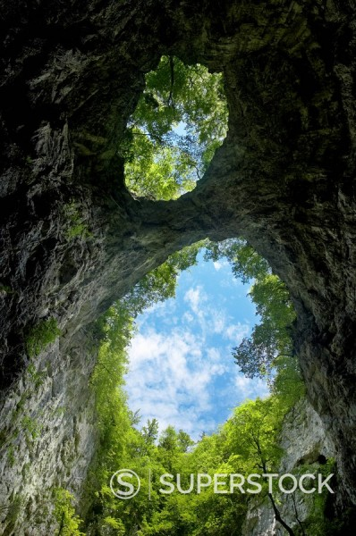 Stock Photo: 1890-100022 Two openings in the roof of the Zelske Jame cave system in Skocjan Karst gorge, UNESCO World Heritage Site, Rakov Skocjan, Slovenia, Europe