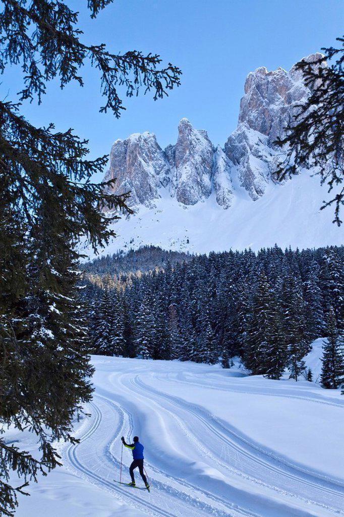 Man cross_country skiing, Puez Odle National Park, Dolomites, South Tirol, Trentino_Alto Adige, Italy, Europe : Stock Photo