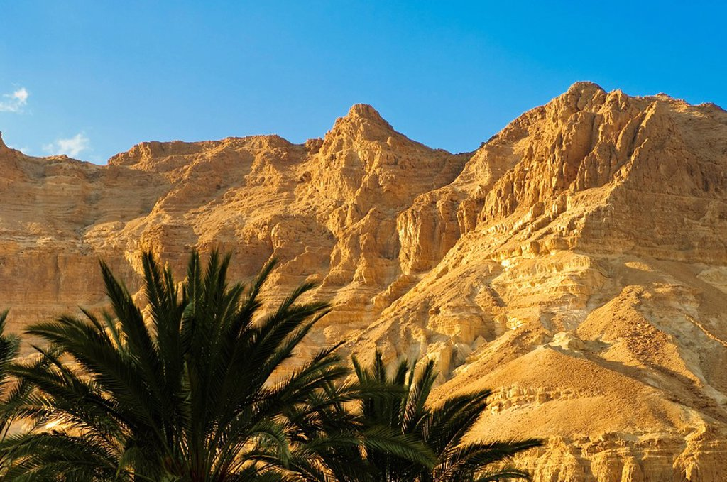 Stock Photo: 1890-100786 Dead Sea area, Israel, Middle East
