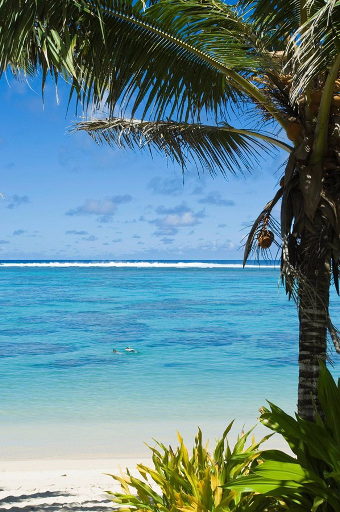 Rarotonga, Cook Islands, South Pacific, Pacific : Stock Photo