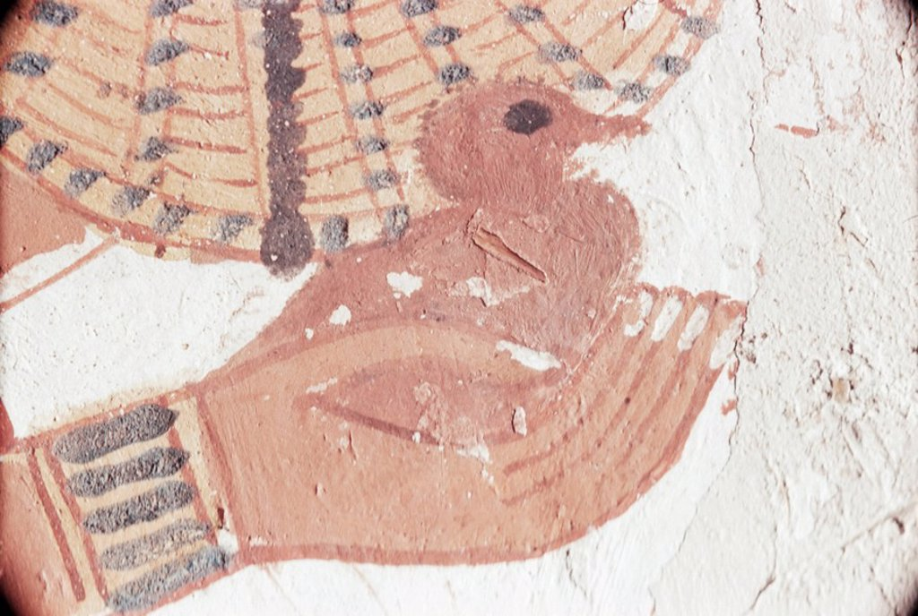 Wall painting of bird in hand in the tomb of Nakht, Minister of Agriculture in the reign of Tutmosis IV, Valley of the Nobles, Thebes, UNESCO World Heritage Site, Egypt, North Africa, Africa : Stock Photo