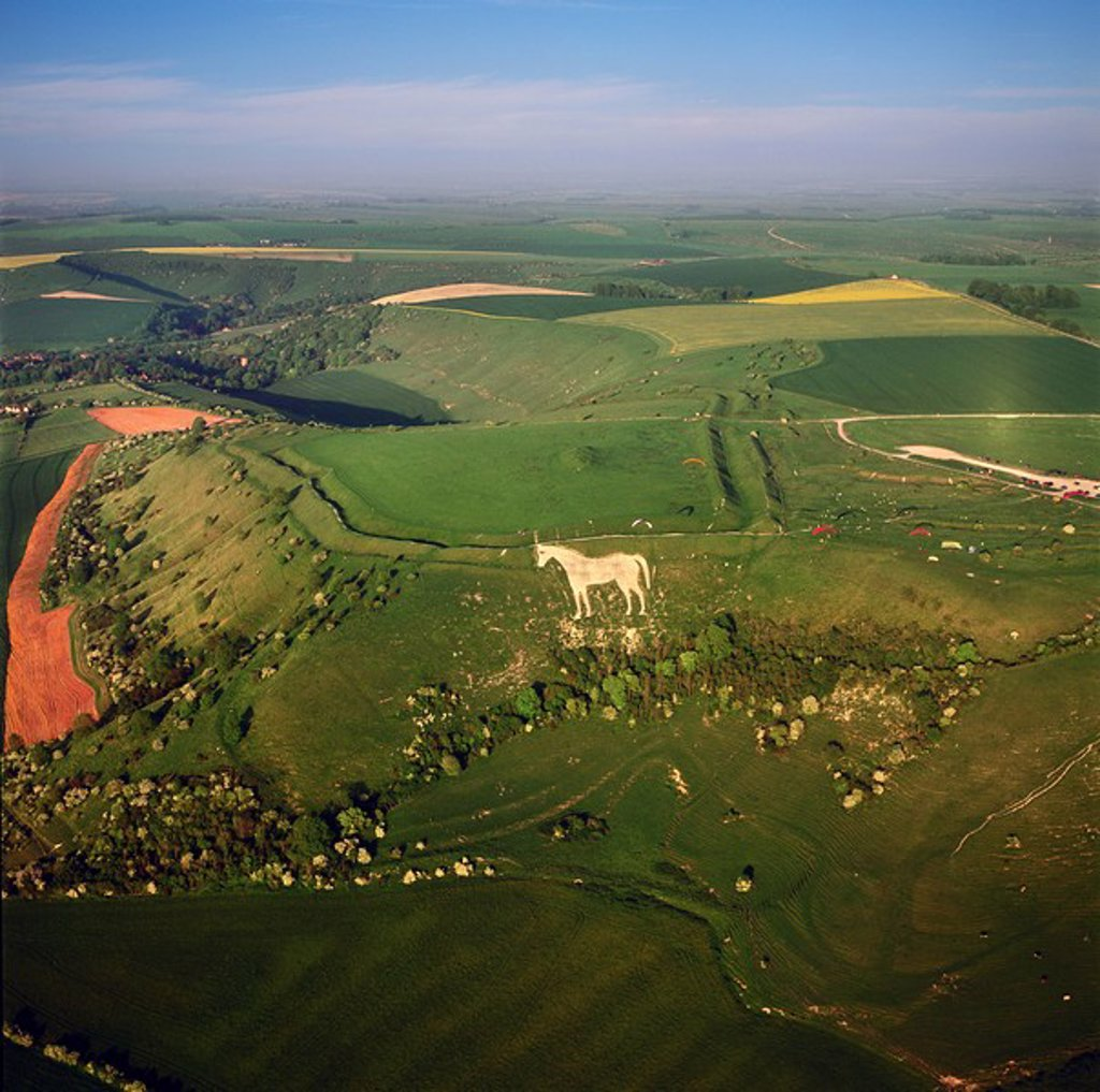 Aerial view of the Westbury White Horse and the Iron Age Bratton Camp Hill Fort, Wiltshire, England, United Kingdom, Europe : Stock Photo
