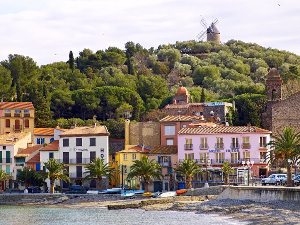 Collioure, Cote Vermeille, Languedoc coast, Roussillon, Pyrenees_Orientales, France, Mediterranean, Europe : Stock Photo