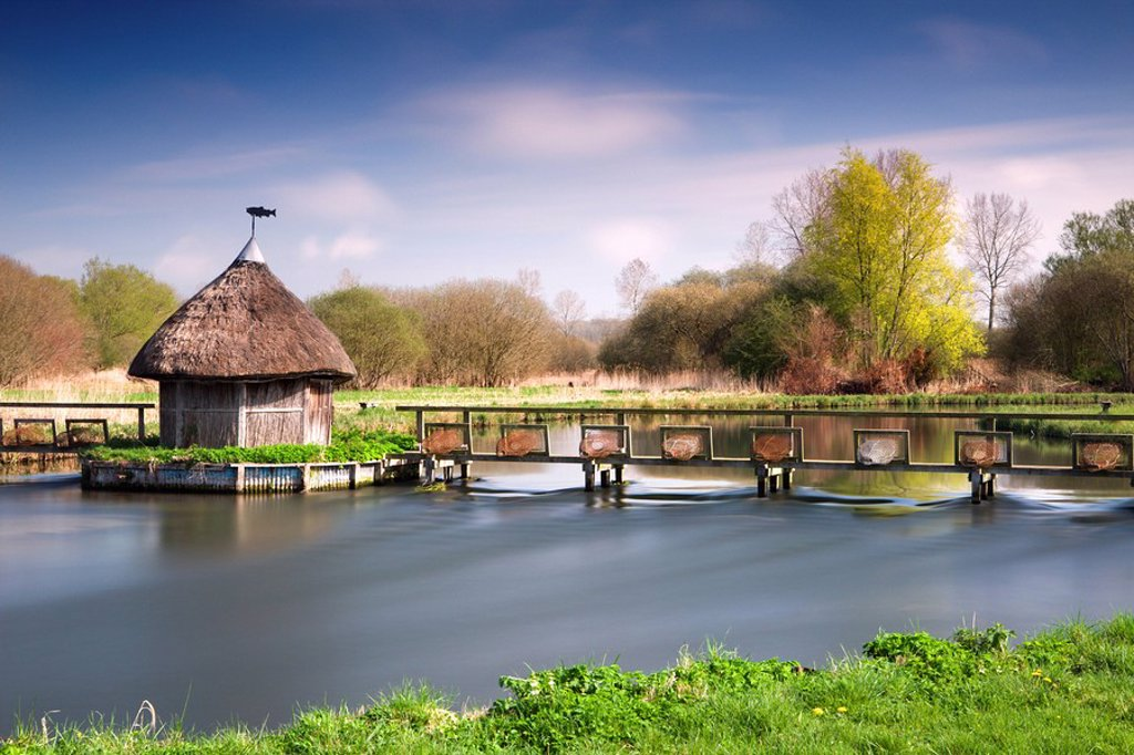 Stock Photo: 1890-106870 Thatched fisherman´s hut and eel traps spanning the River Test near Leckford, Hampshire, England, United Kingdom, Europe