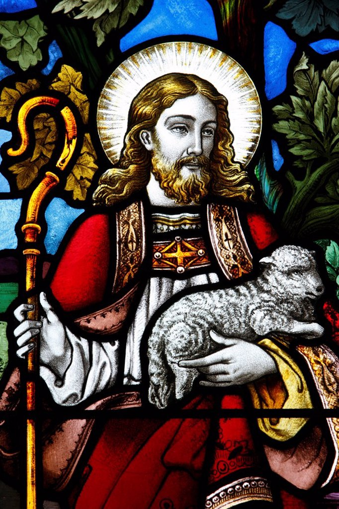 Jesus the Good Shepherd, 19th century stained glass in St. John´s Anglican church, Sydney, New South Wales, Australia, Pacific : Stock Photo