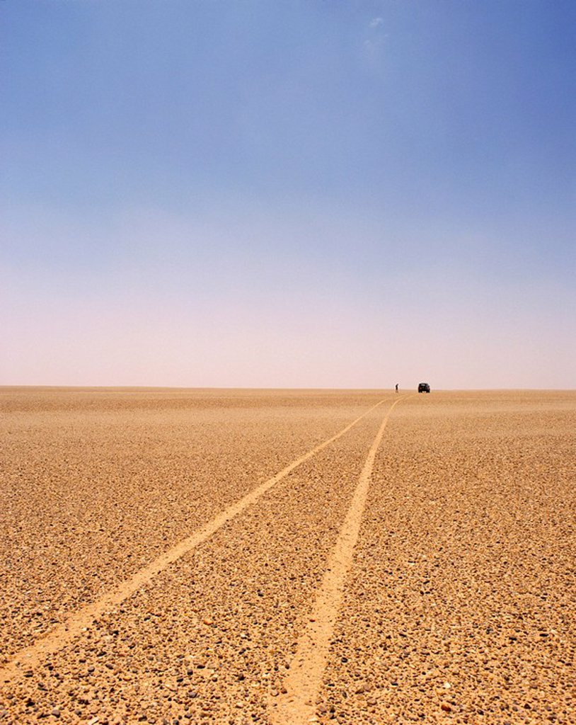 Typical example of the reg, a vast featureless stoney plain, Sahara region, Algeria, North Africa, Africa : Stock Photo