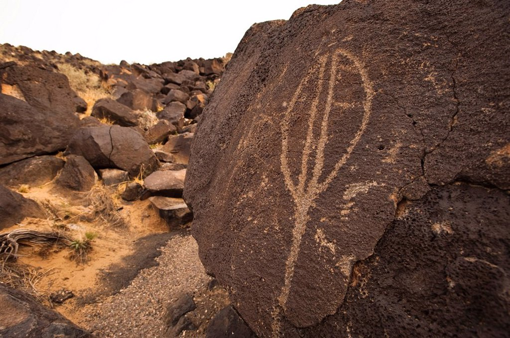 Petroglyph National Monument, Albuquerque, New Mexico, United States of America, North America : Stock Photo