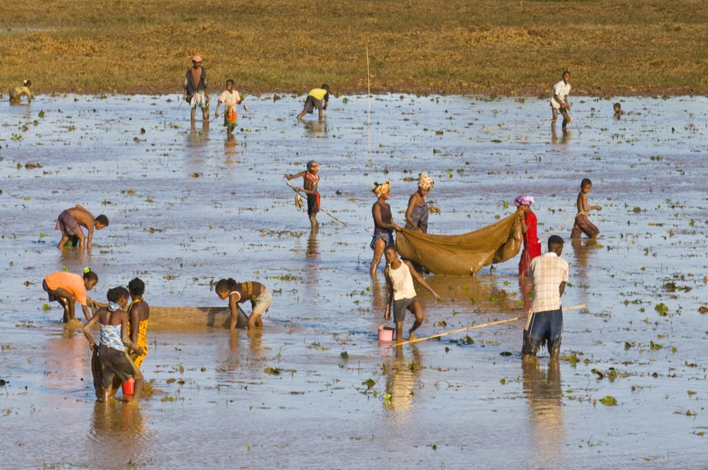 People fishing in a shallow lake near Diego Suarez Antsiranana, Madagascar, Africa : Stock Photo