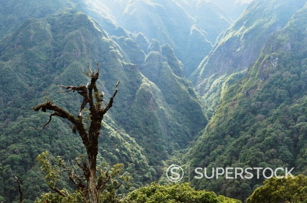 Stock Photo: 1890-112532 Fansipan, Hoang Lien Mountains, Vietnam, Indochina, Southeast Asia, Asia