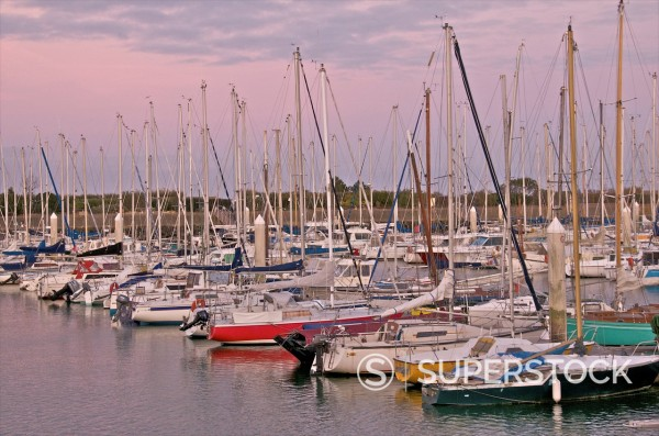 Stock Photo: 1890-113603 Sailing boats, port de plaisance, St. Vaast la Hougue, Manche, Normandy, France, Europe