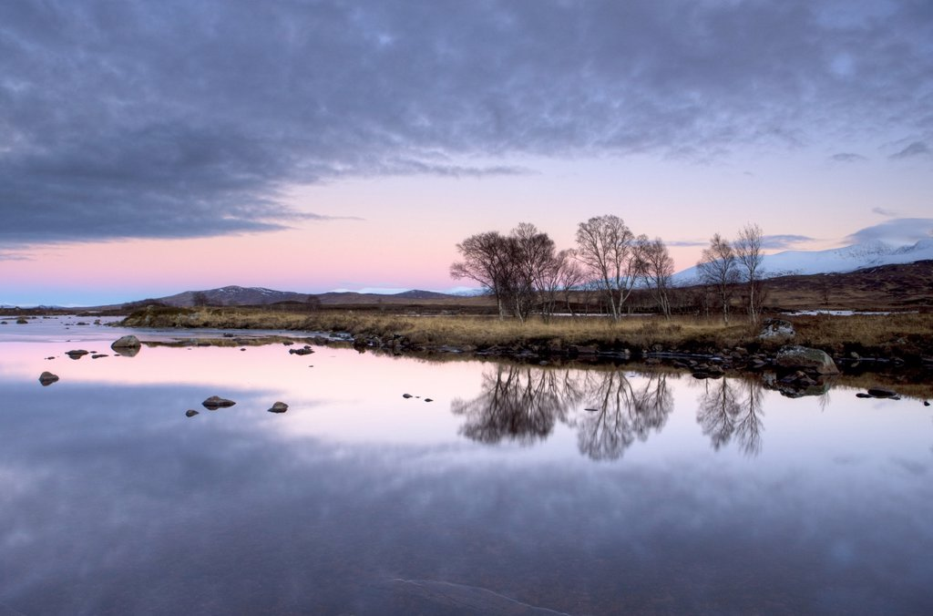 Evening view over flat calm Loch Ba with pink afterglow in sky, reflected in loch and snow_capped mountains in distance, Rannoch Moor, near Fort William, Highland, Scotland, United Kingdom, Europe : Stock Photo