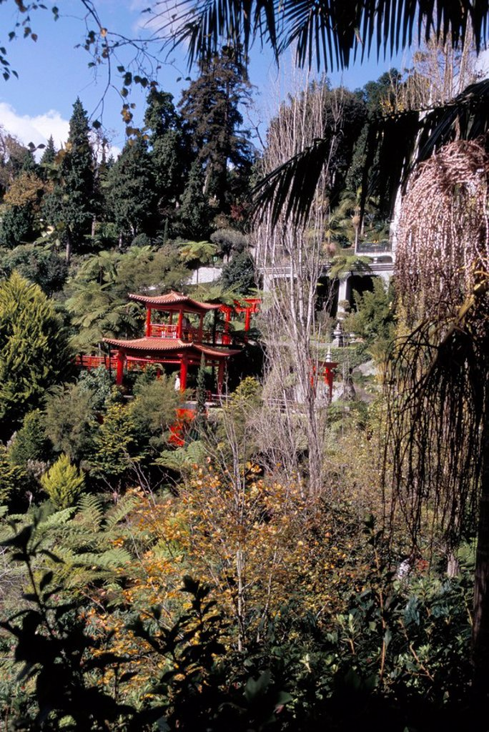 View to Japanese Garden, Monte Palace Tropical Garden, Funchal, Madeira, Portugal, Europe : Stock Photo