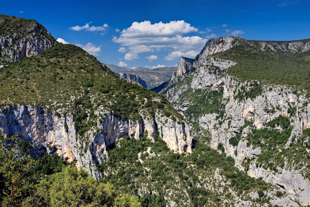 Stock Photo: 1890-120111 Gorge Du Verdon, Provence, France, Europe