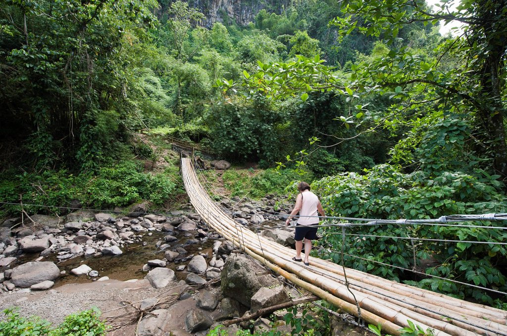 Stock Photo: 1890-123362 Bamboo bridge at Dark View Falls, St. Vincent, St. Vincent and The Grenadines, Windward Islands, West Indies, Caribbean, Central America
