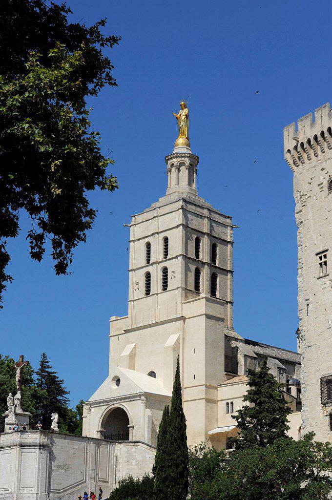 Palais des Papes Papal Palace, UNESCO World Heritage Site, Avignon, Provence, France, Europe : Stock Photo
