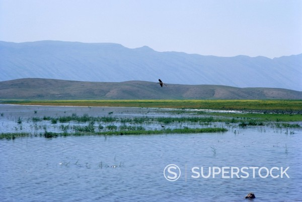 Stock Photo: 1890-1285 Lake Paresham, Iran, Middle East