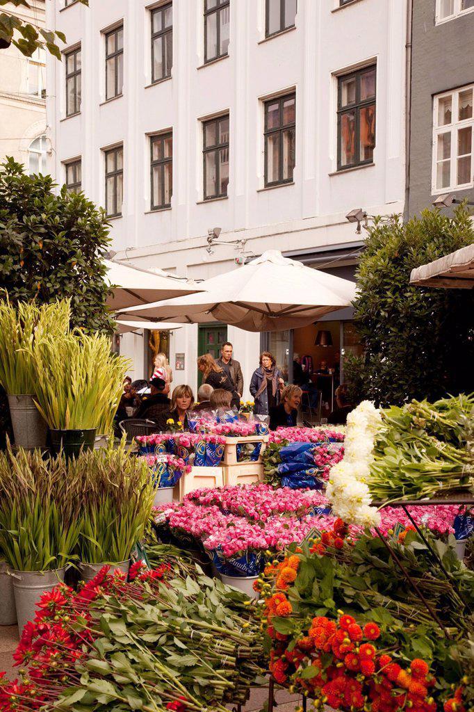 Flower shop on Ostergade, Copenhagen, Denmark, Scandinavia, Europe : Stock Photo