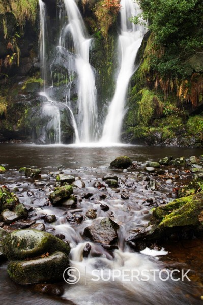 Stock Photo: 1890-128624 Posforth Gill Waterfall, Bolton Abbey, Yorkshire, England, United Kingdom, Europe