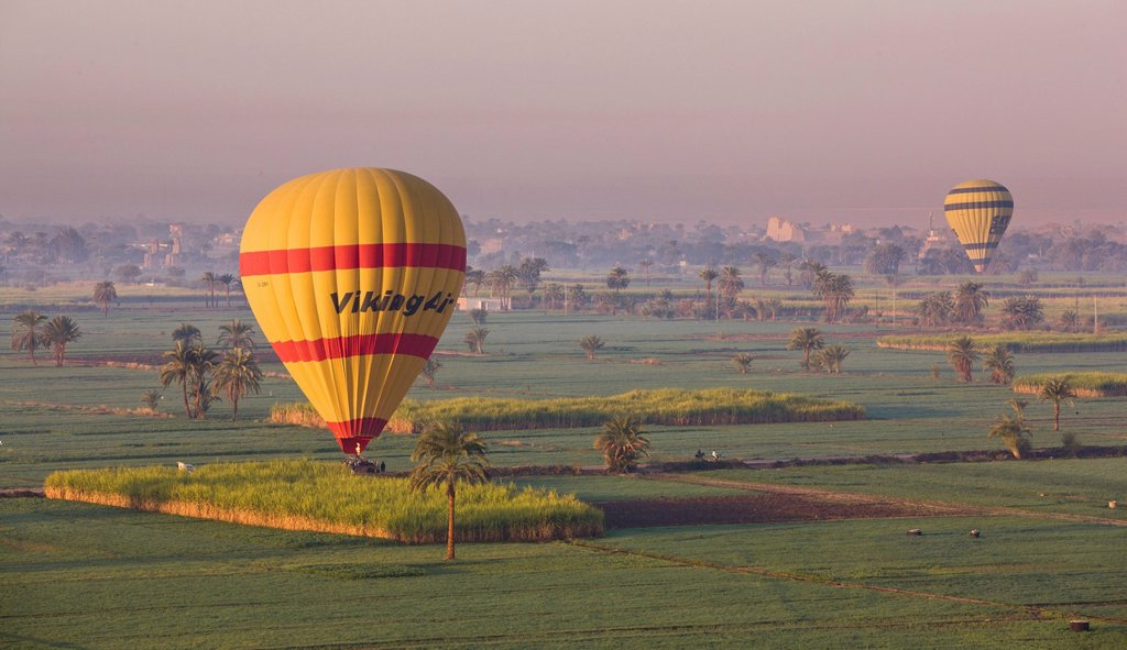 Hot air balloons landing in the fields by Luxor´s Theban Necropolis, Thebes, Egypt, North Africa, Africa : Stock Photo