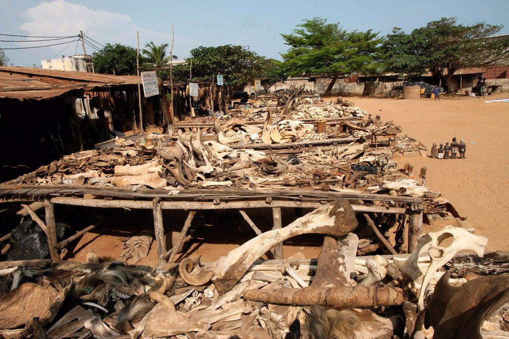 Akodessewa fetish market, Lome, Togo, West Africa, Africa : Stock Photo