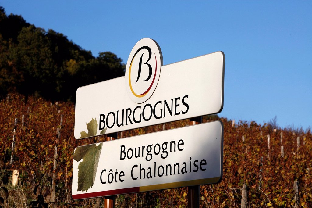 Burgundy vineyard sign, Culles_les_Roches, Saone_et_Loire, Burgundy, France, Europe : Stock Photo