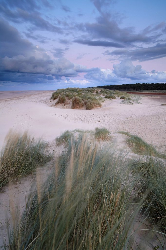 Stock Photo: 1890-134177 A stormy autumn evening at Holkham Bay, Norfolk, England, United Kingdom, Europe