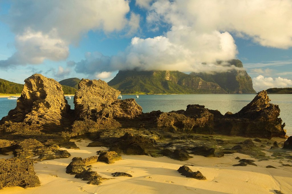 Stock Photo: 1890-136932 Eroded calcarenite rock cemented coral sands with Mount Lidgbird and Mount Gower by the lagoon with the world´s most southerly coral reef, on this 10km long volcanic island in the Tasman Sea, Lord Howe Island, UNESCO World Heritage Site, New South Wales,. Eroded calcarenite rock cemented coral sands with Mount Lidgbird and Mount Gower by the lagoon with the world´s most southerly coral reef, on this 10km long volcanic island in the Tasman Sea, Lord Howe Island, UNESCO World Heritage Site, New So