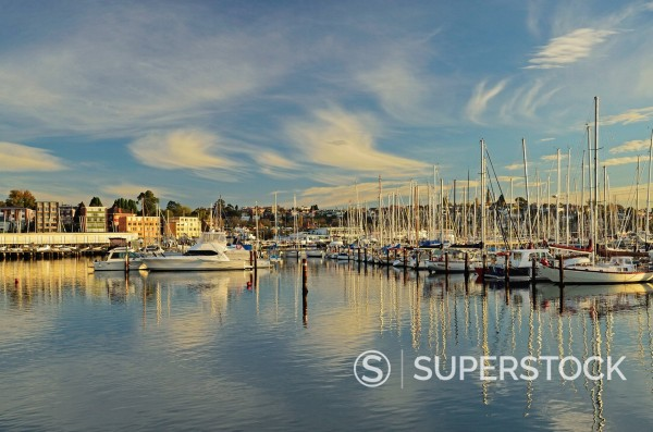 Sandy Bay, Hobart, Tasmania, Australia, Pacific : Stock Photo