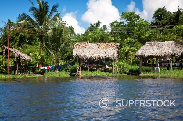 Warao Indian hatched_roof huts built upon stilts, Delta Amacuro, Orinoco Delta, Venezuela, South America : Stock Photo