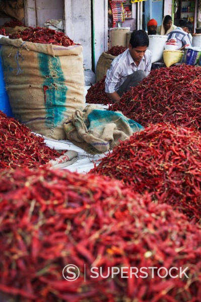 Stock Photo: 1890-138386 Vendor selling chillies at market, Bundi, Rajasthan, India, Asia