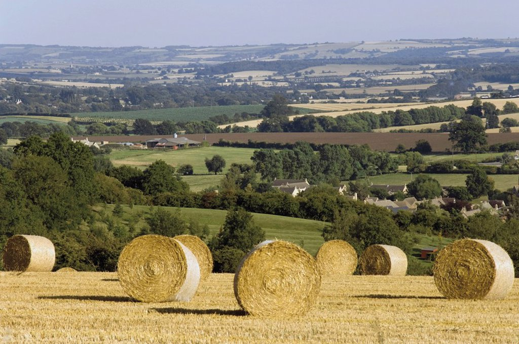 Bales of hay with Chipping Campden beyond, from the Cotswolds Way footpath, The Cotswolds, Gloucestershire, England, United Kingdom, Europe : Stock Photo