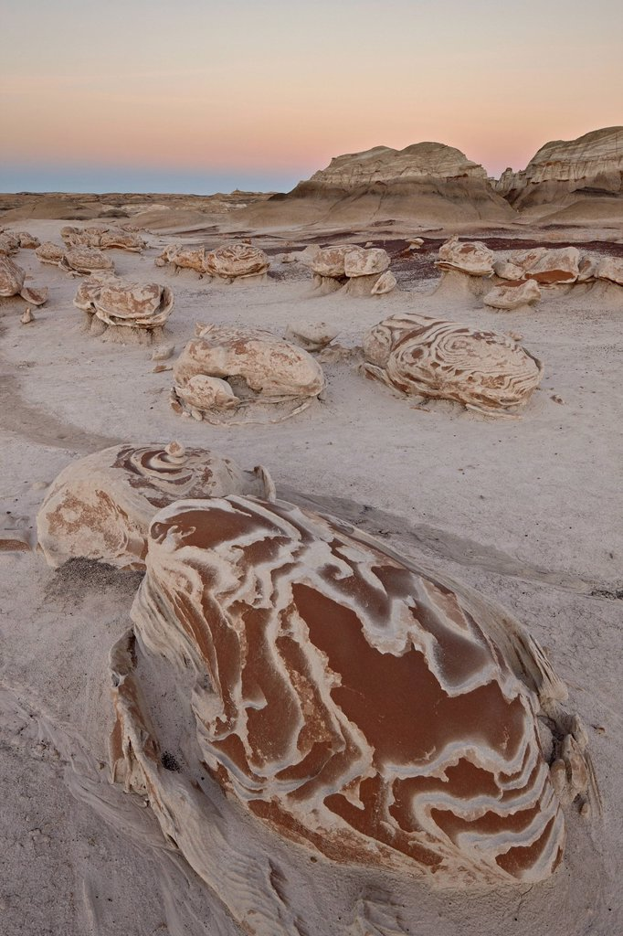 Rocks at the Egg Factory at dusk, Bisti Wilderness, New Mexico, United States of America, North America : Stock Photo