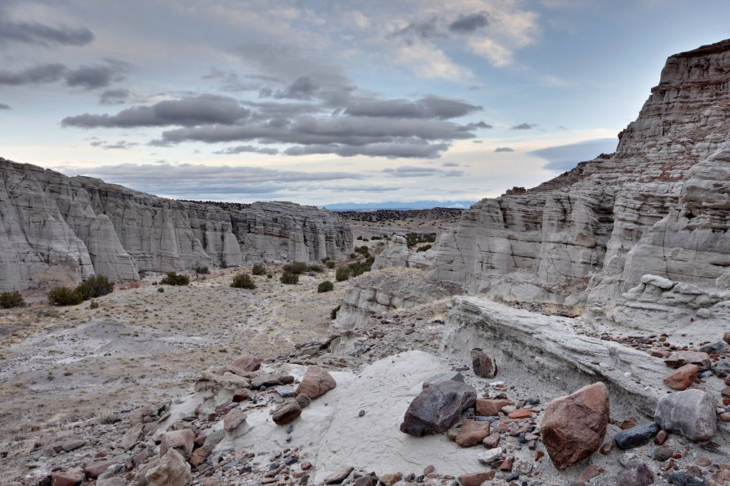 Stock Photo: 1890-144338 White rock badlands, Carson National Forest, New Mexico, United States of America, North America