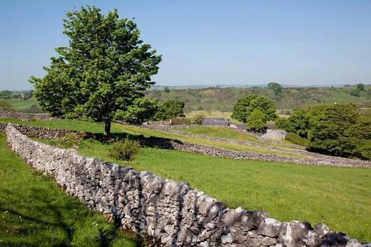 Dry stone walls, Hartington, Peak District, Derbyshire, England, United Kingdom, Europe : Stock Photo