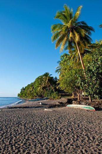 Beach on Savo Island, Solomon Islands, Pacific : Stock Photo