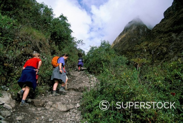 Tourists trekking, Dead Woman Pass, Inca Trail, Peru, South America : Stock Photo